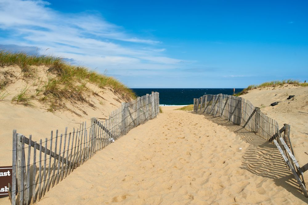 Cape Cod Trail to Beach